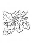 Осень черно белые рисунки