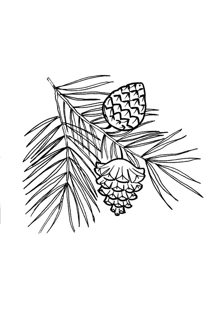 Granris Målarbilder Målarbilder Löv i träden