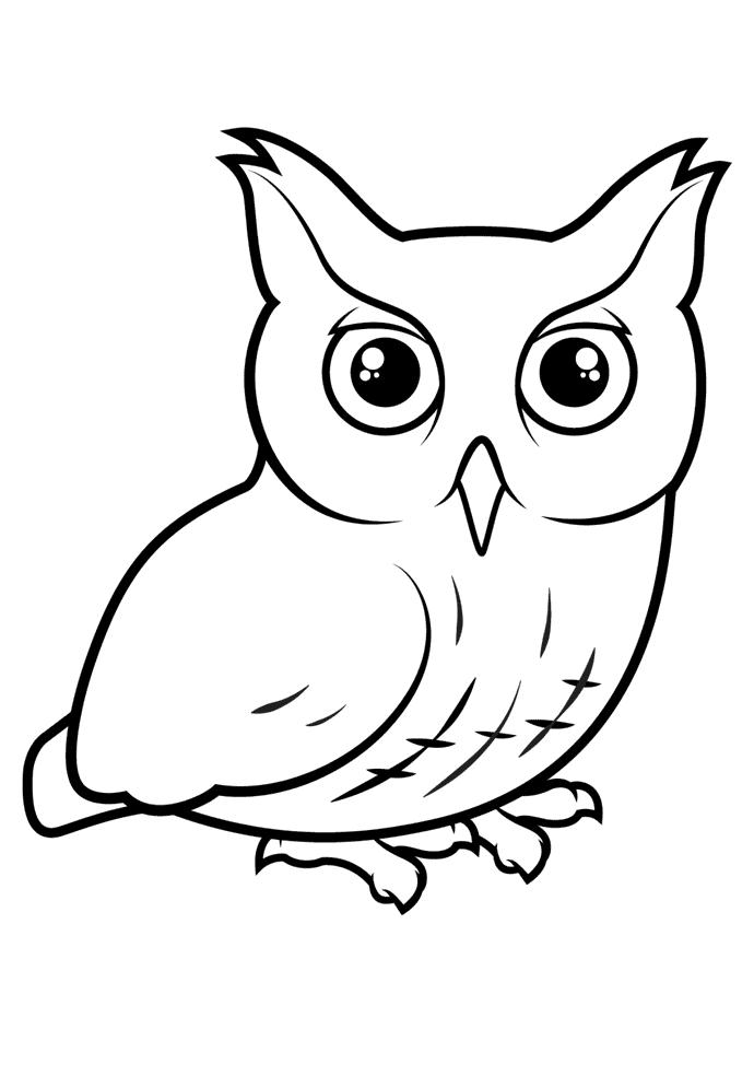 Uggla Målarbilder Målarbilder fåglar