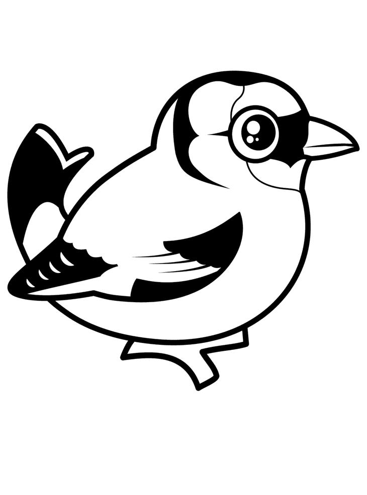 Steglits Målarbilder Målarbilder fåglar
