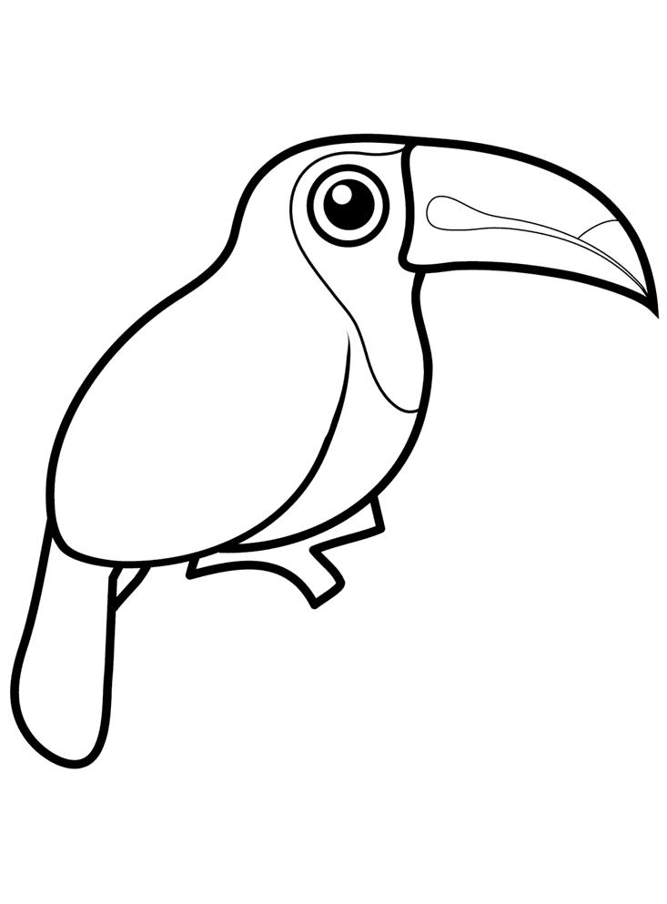 Svaveltukan Målarbilder Målarbilder fåglar